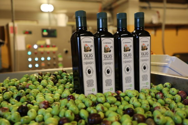 4 bottles half litre each - Olio della Page Extra Virgin Olive Oil